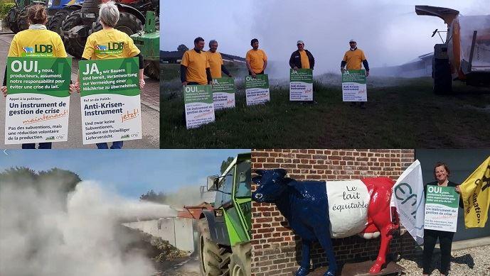 Dans huit pays européens, des producteurs laitiers ont symboliquement jeté de la poudre de lait pour dénoncer les mesures prises par la Commission européenne pour faire face à la surproduction laitière.