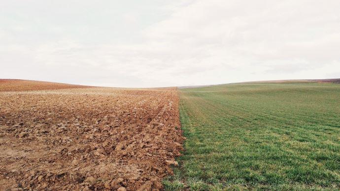 Dans un texte commun, des ONG et des organisations agricoles dont la Confédération paysanne accusent la FNSEA d'instrumentaliser la crise actuelle pour défendre un modèle