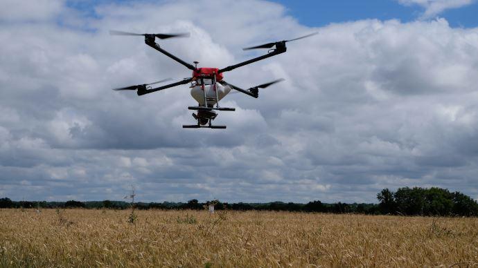 Drone pour semer les couverts végétaux avant récolte
