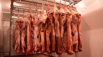 L'aide au stockage privé de viande bovine est suspendue