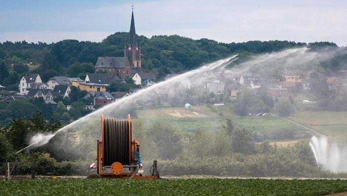 irrigation des cultures