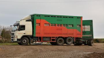 Encore plus de vigilance sur le transport des animaux lors des fortes chaleurs