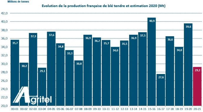 Production de blé tendre en France