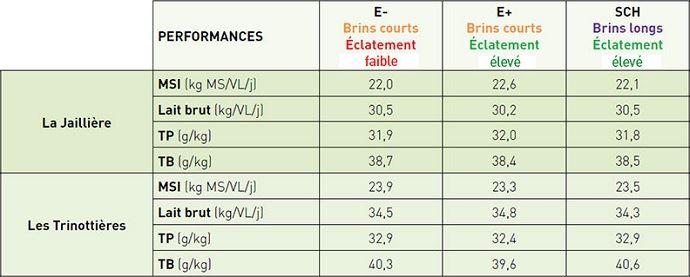 Effet de l'éclatement du grain de maïs ensilage sur les performances des vaches laitières
