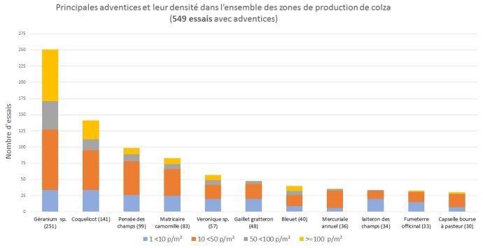 Fréquence et densité des principales adventices du colza.