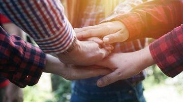 Le plus efficace entre petit/grand collectif, avec salariés ou associés?