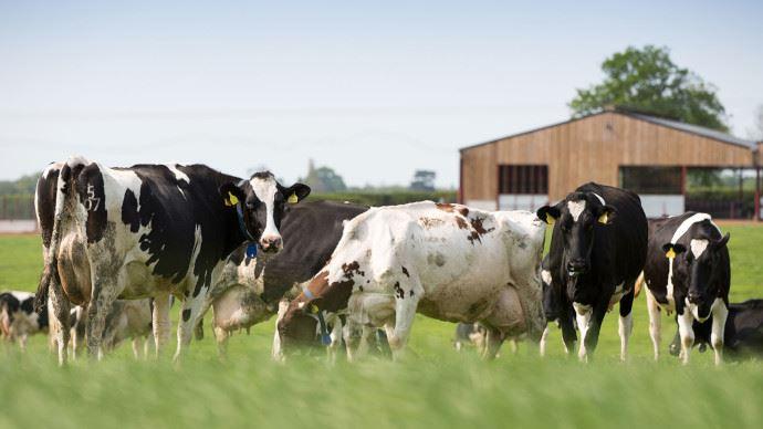 La méthanisation agricole, marché porteur de croissance pour Agripower