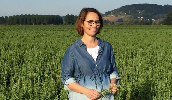 Aurélie Barada