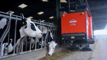 Quel impact sur la production et le comportement des animaux?