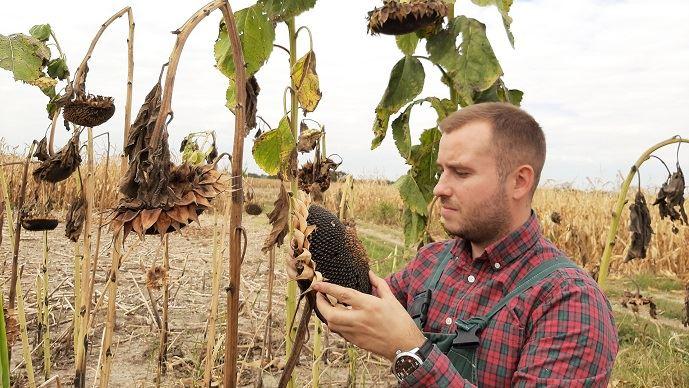 En 2019, le montant moyen de la Dotation jeune agriculteur était d'environ 32000€.