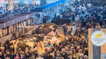 Le salon de l'agriculture 2021 à Paris est annulé