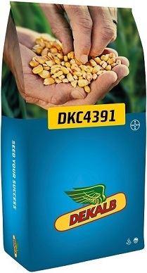 Sac DKC4391