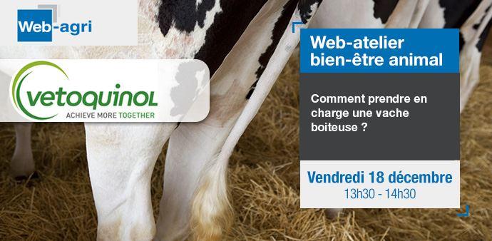 Webinaire Web-agri Vetoquinol