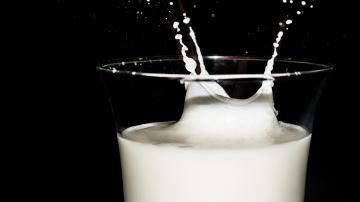 À quel point la crise sanitaire a-t-elle bouleversé les marchés laitiers?