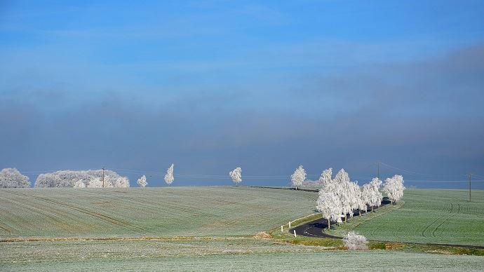 Les cultures russes font face à un risque de gel inquiétant