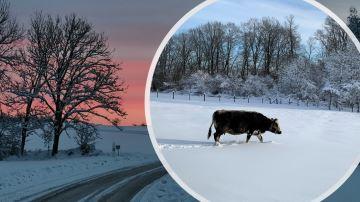 L'est du pays sous la neige ce vendredi, la moitié nord demain?