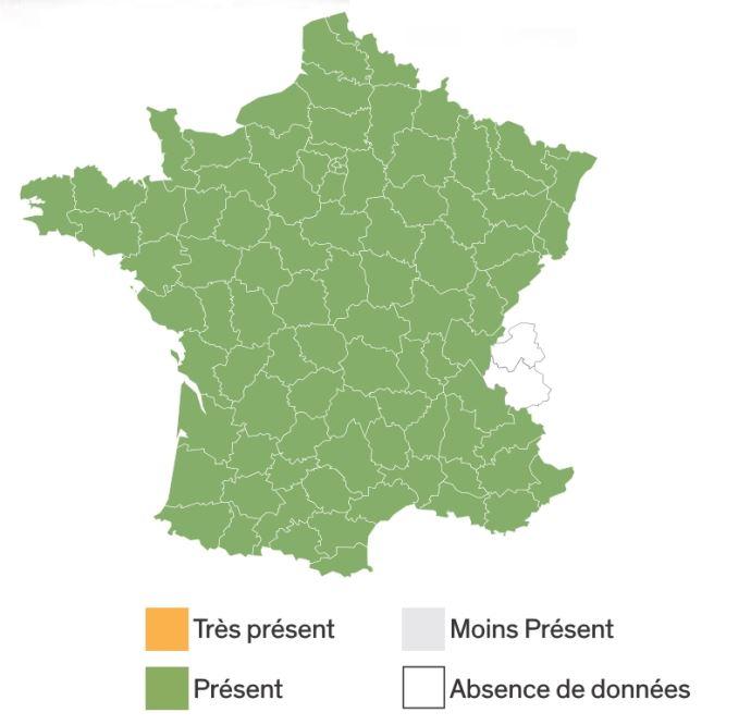 Répartition géographique du laiteron rude