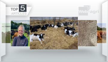 Carton plein pour les trois élevages passés «au-delà des clôtures»