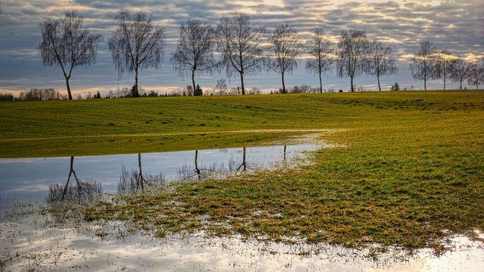 champs flaque pluie