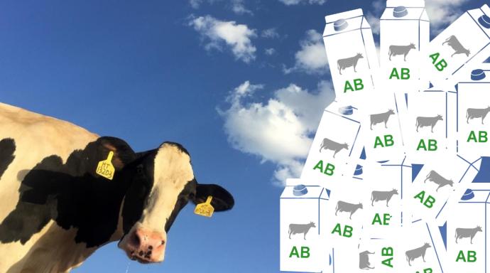La consommation de produits laitiers biologiques progresse moins vite que la production.
