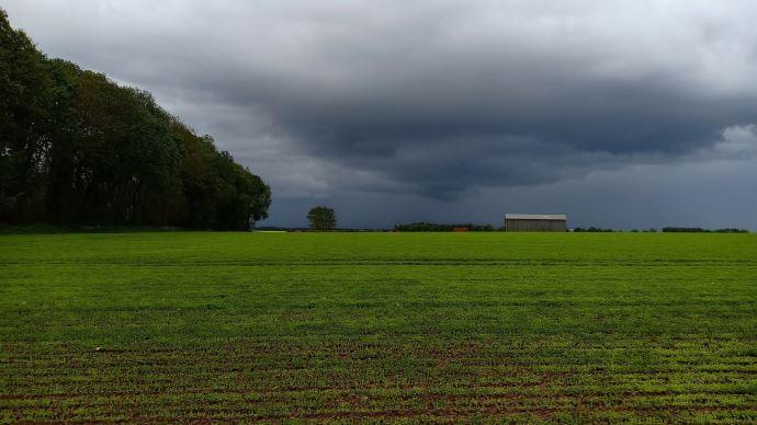 pluies sur des champs agricoles