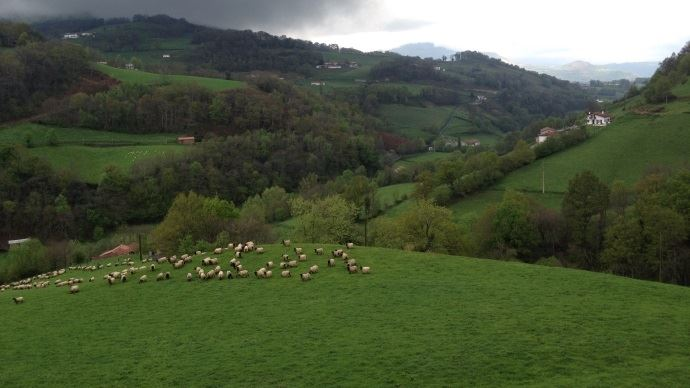Paysage Pays basque