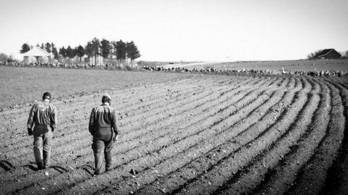 agriculteurs marchant dans des sillons