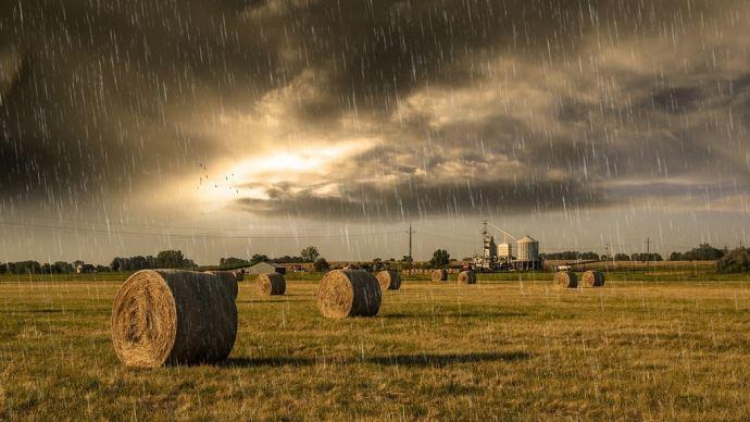 Pluie pendant le foin