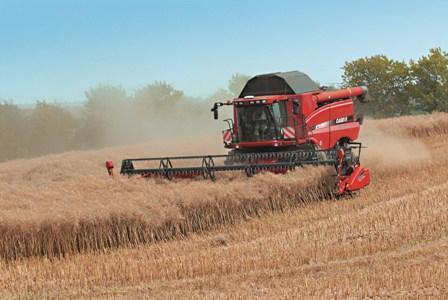 Fort rebond du blé et du maïs