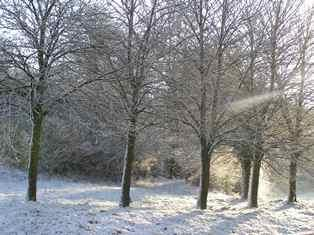 Neige en basse vallée du Rhône jeudi et grand froid