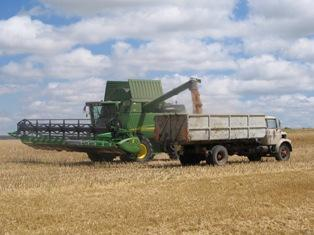 Le froid en Russie et en Ukraine soutient les produits agricoles