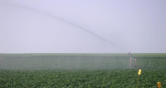 Tendances saisonnières et grande menace de sécheresse