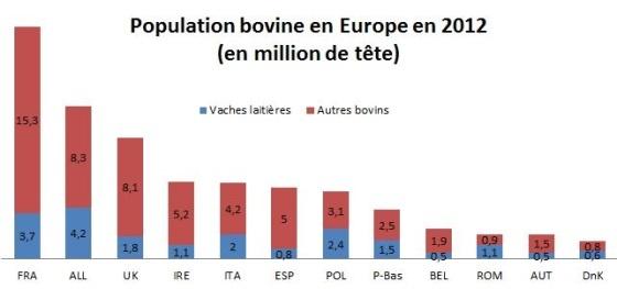 Population bovins en europe par pays
