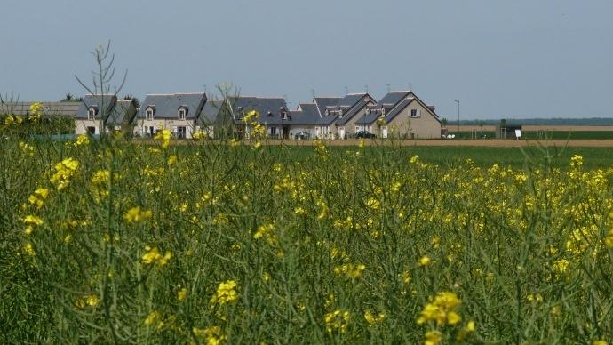 Urbanisation et agriculture