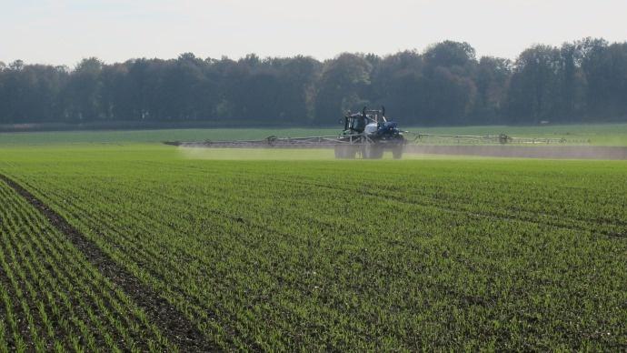 Traitement du blé