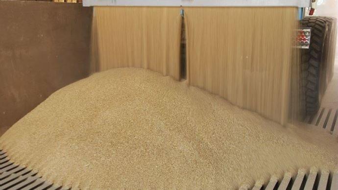 tas de blé.jpg