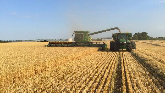Moisson de blé aux États-Unis